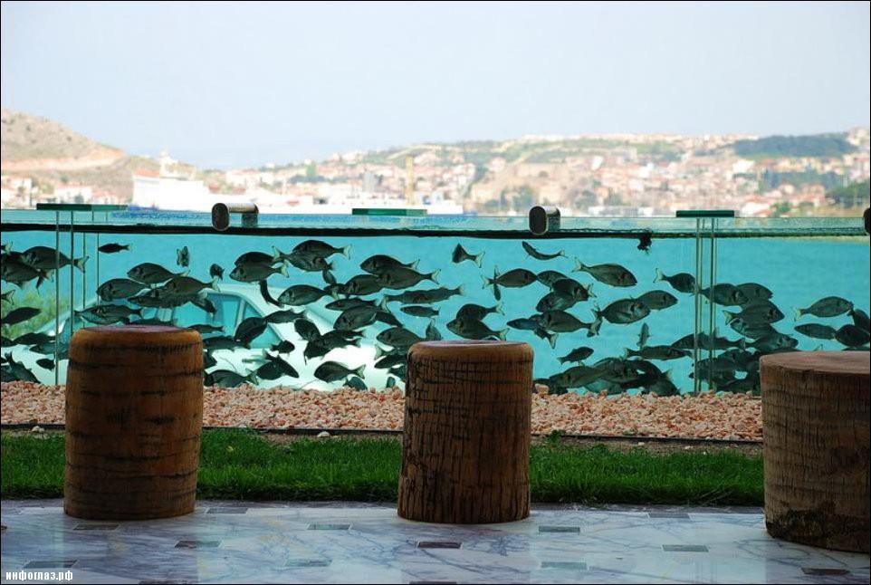 aquarium-fence-003