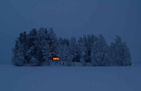 33605-snow-forest-cabin