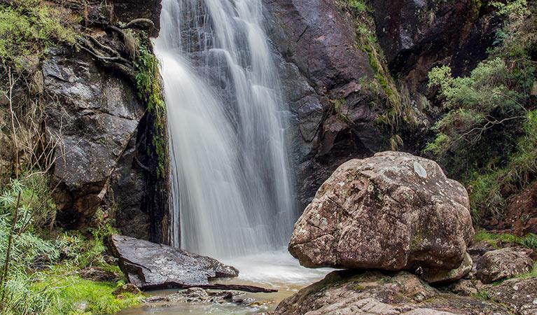 wombeyan-waterfall-walking-track-05