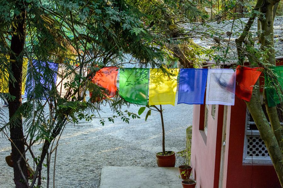 nepal44.jpg
