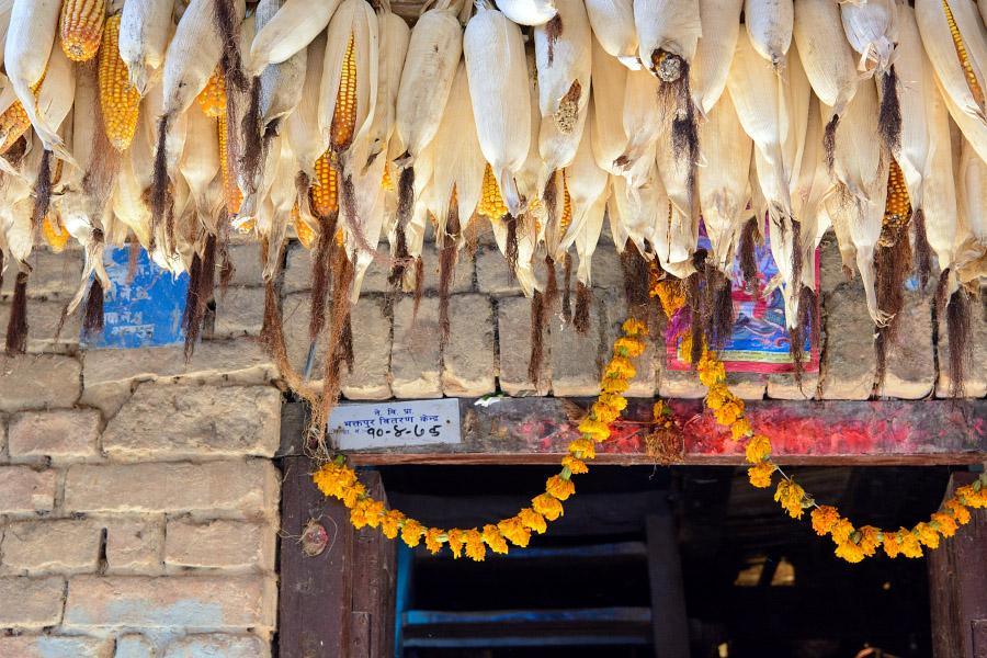 nepal62.jpg