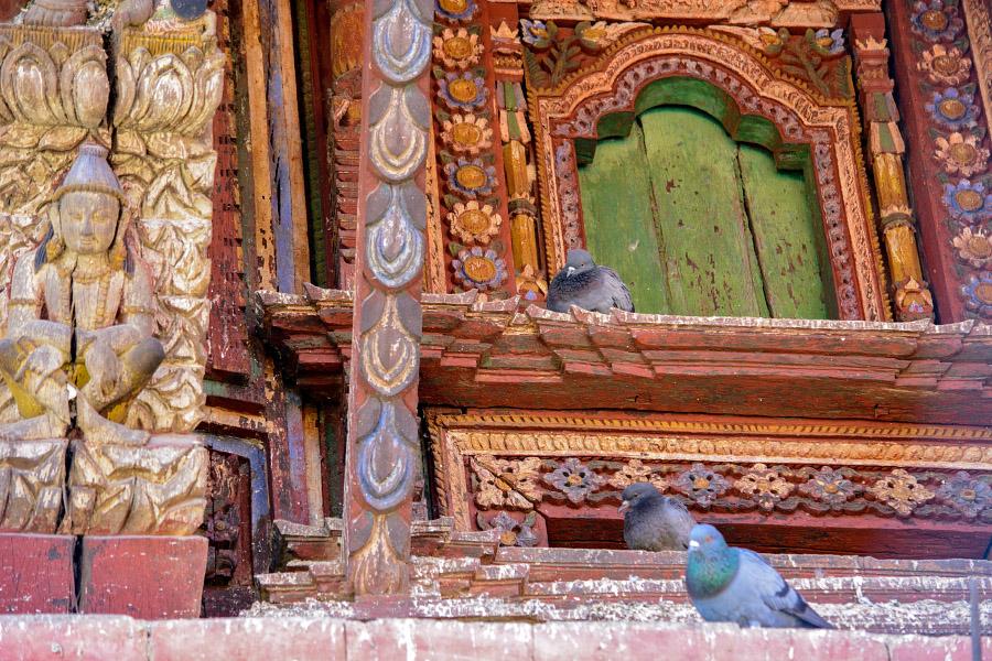 nepal103.jpg