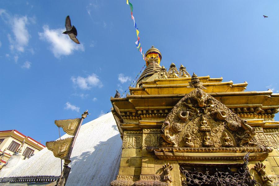 nepal444.jpg