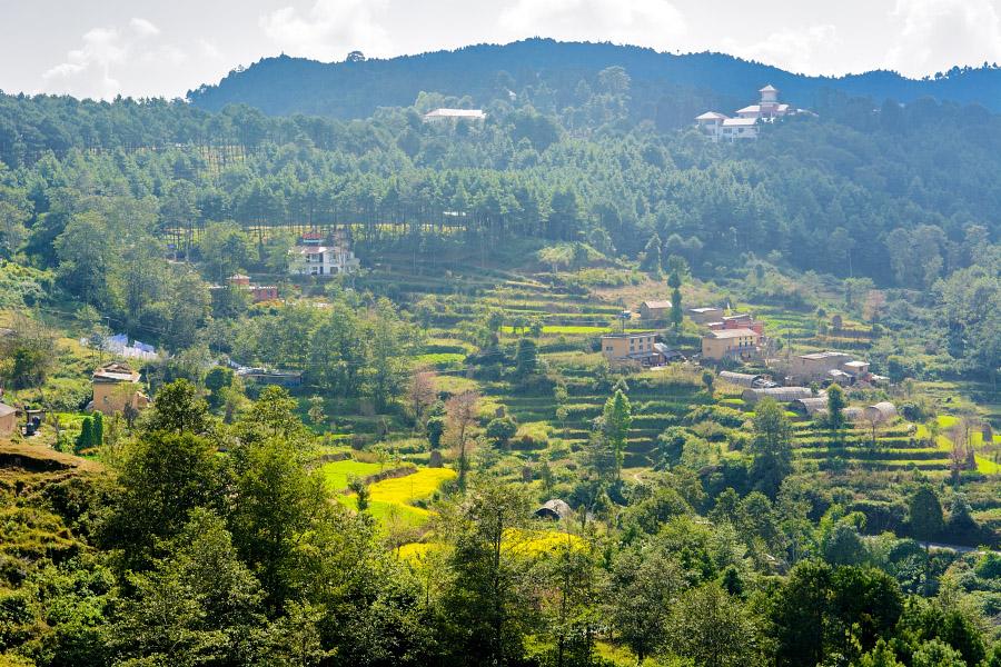 nepal474.jpg