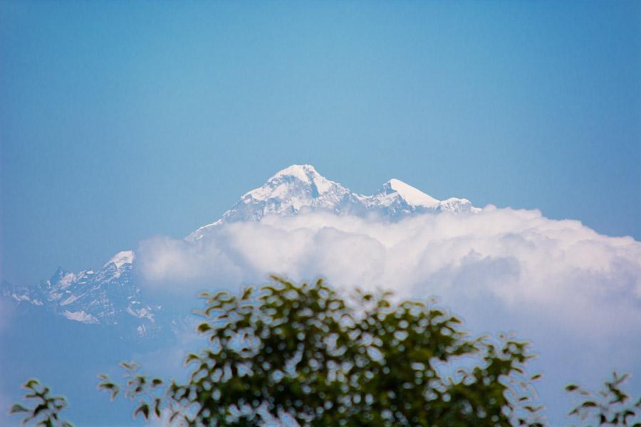 nepal490.jpg