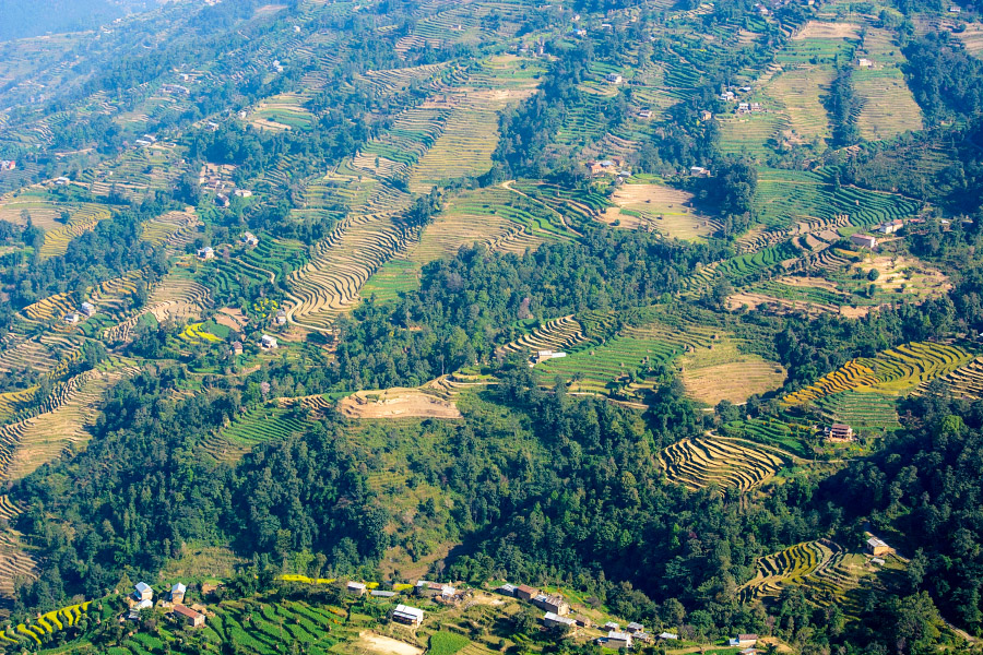 nepal542.jpg