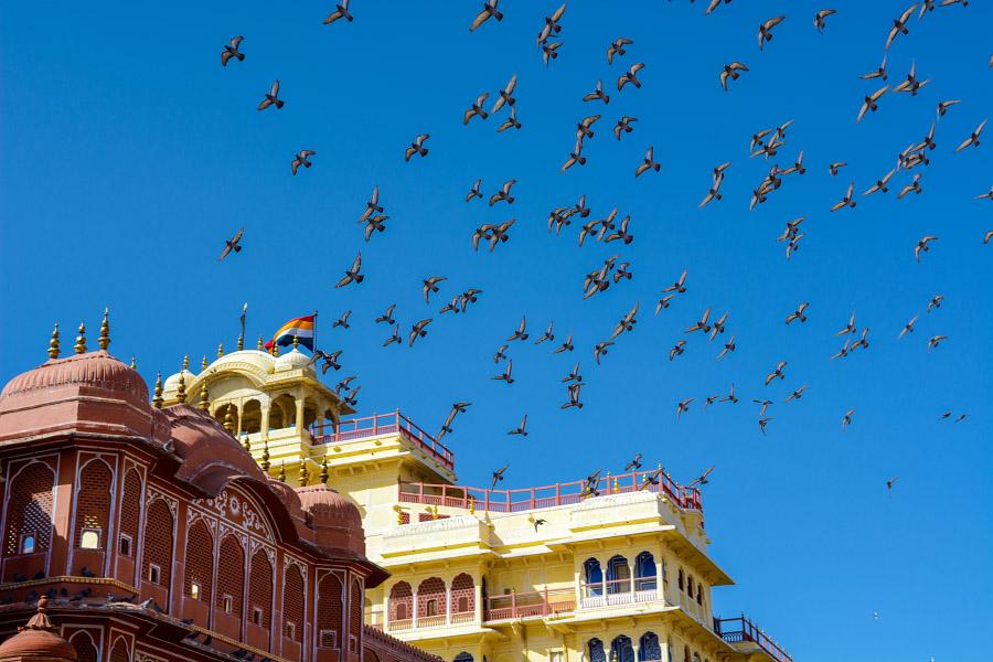 India375.jpg