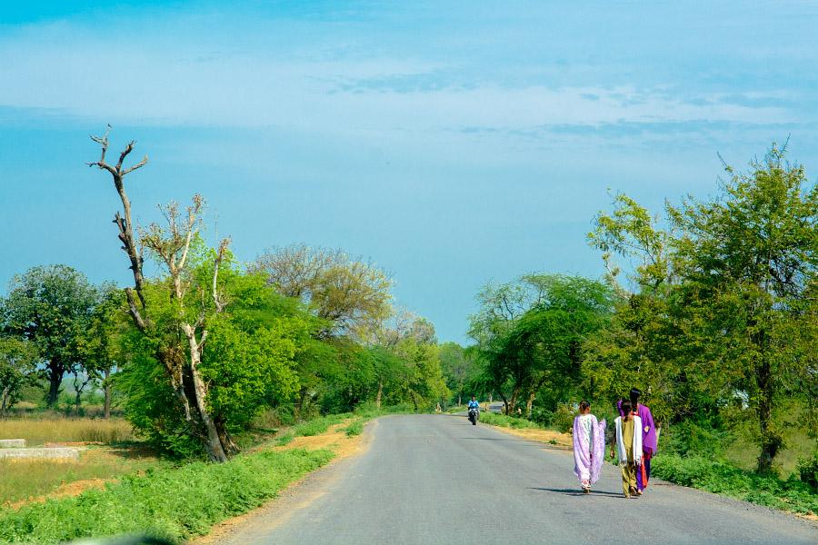 india1253.jpg