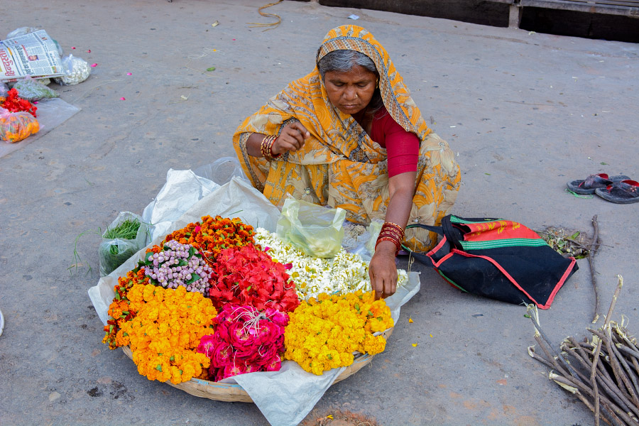 india1411.jpg