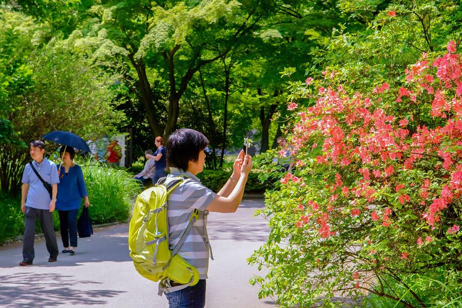 japan32.jpg