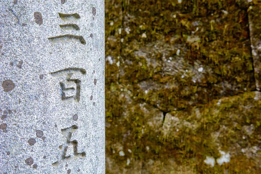 japan286.jpg