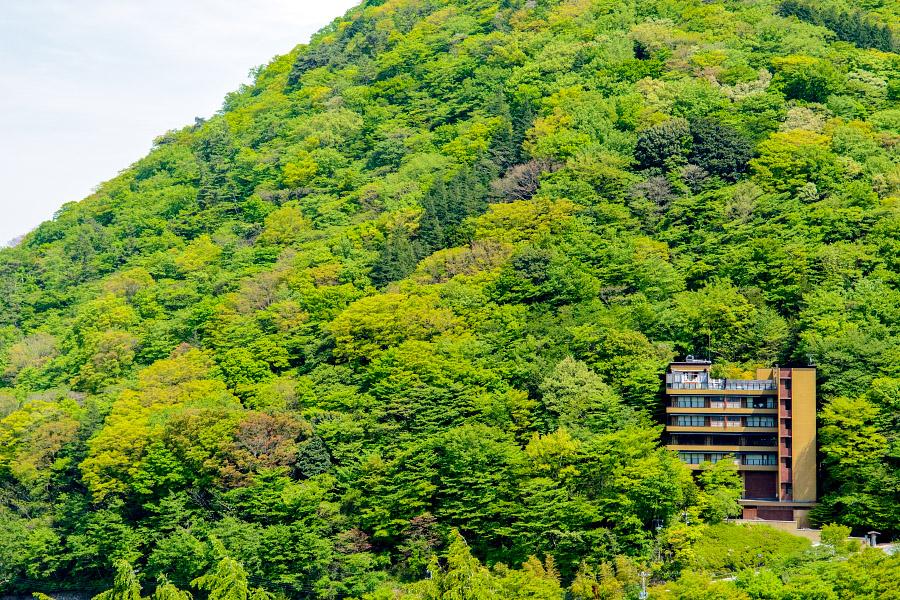 japan712.jpg