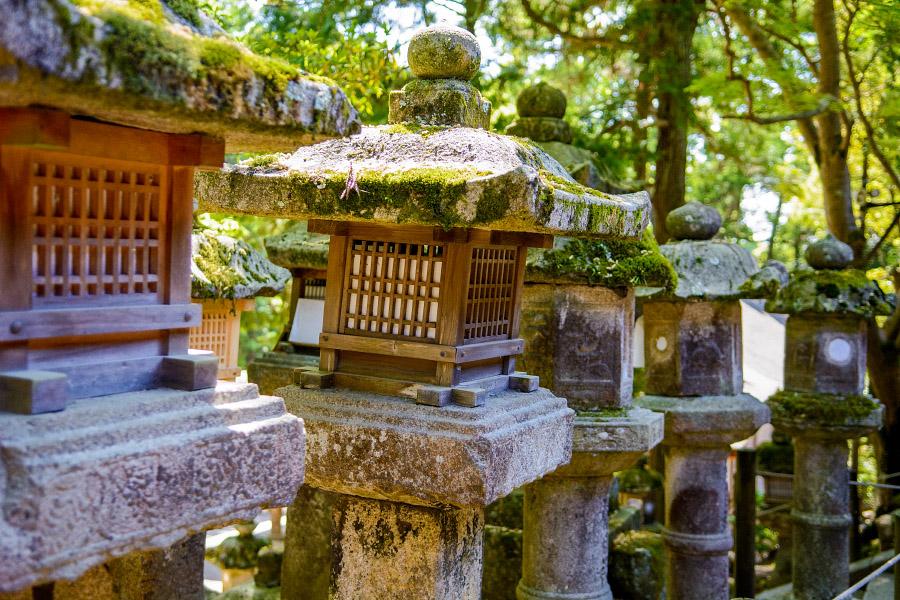japan1004.jpg