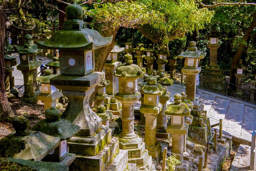 japan1008.jpg