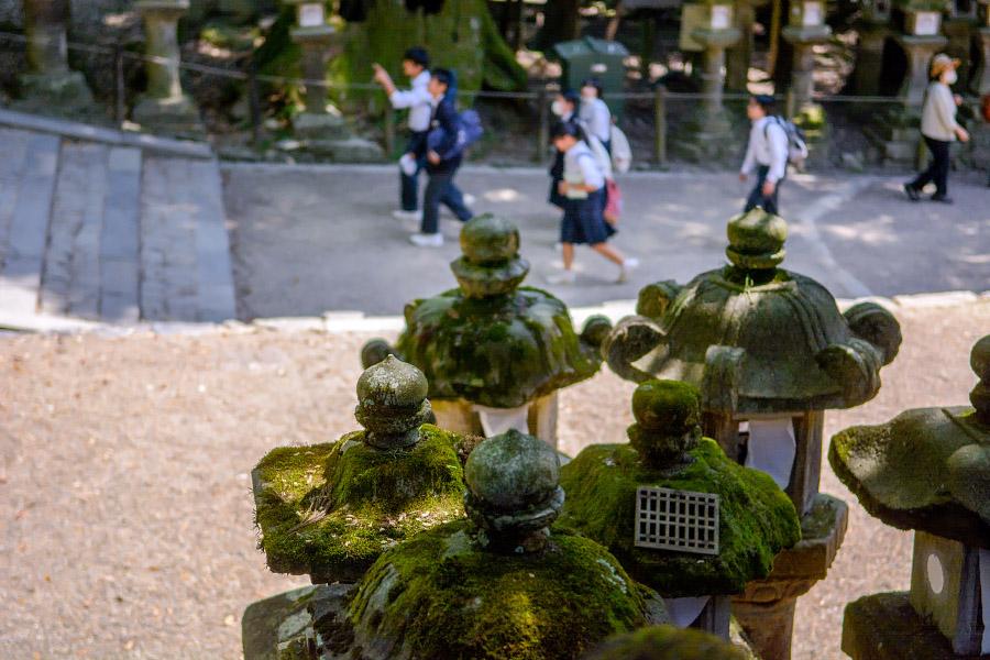 japan1009.jpg