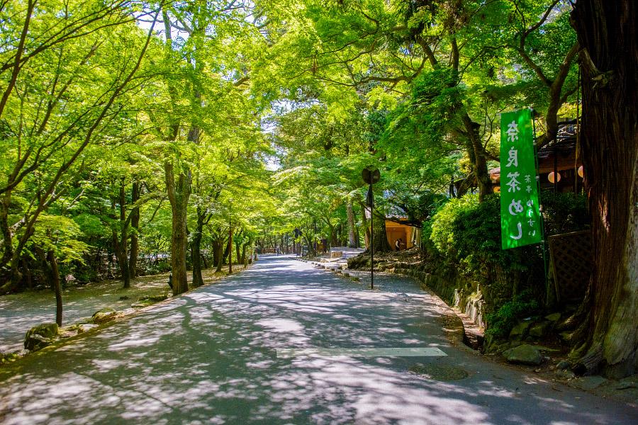 japan1040.jpg