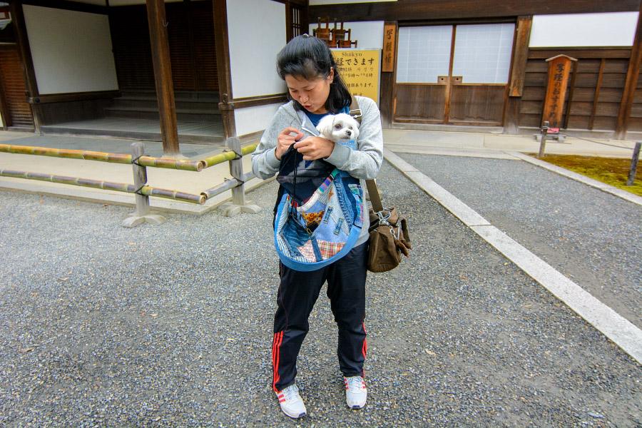 japan1160.jpg