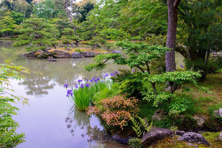 japan1180.jpg