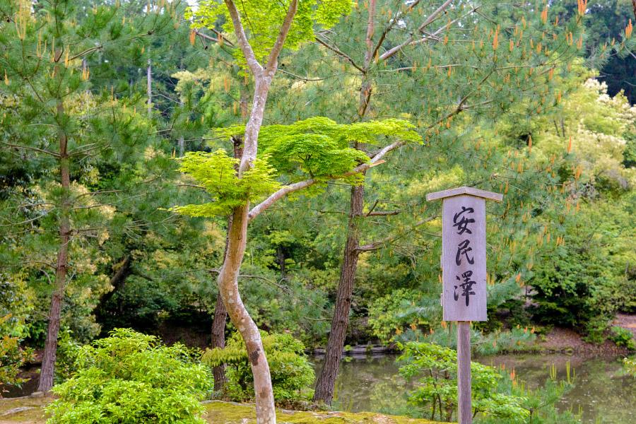japan1191.jpg