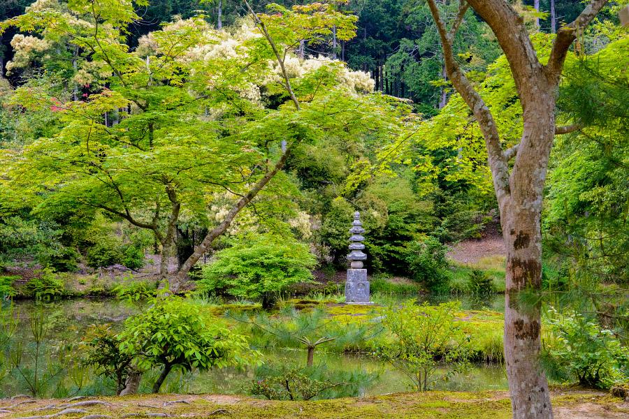 japan1192.jpg