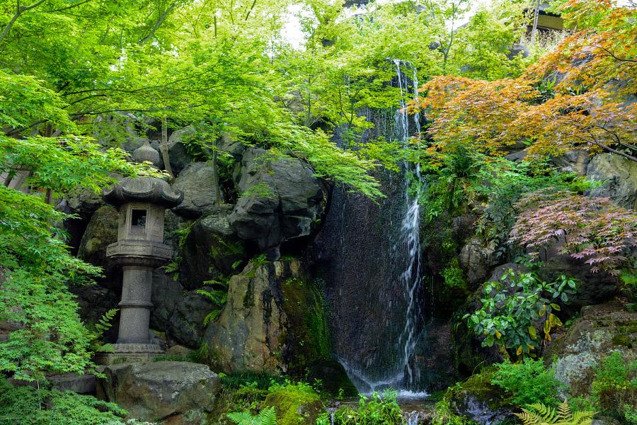 japan1287.jpg