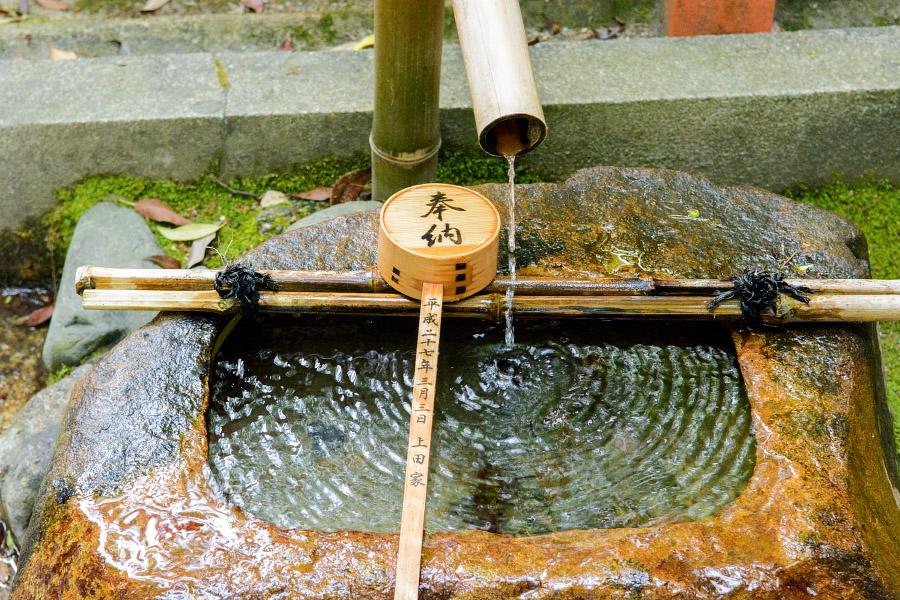 japan1363.jpg