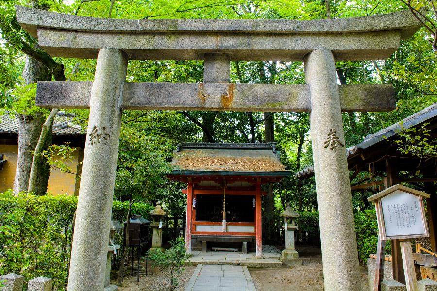japan1364.jpg