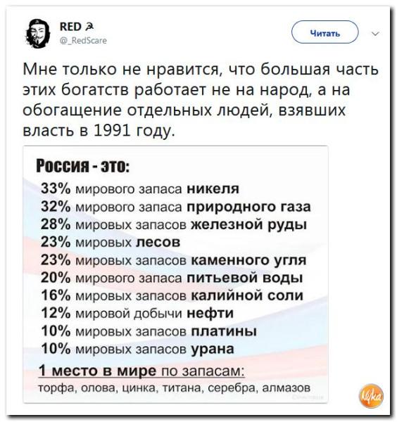 15 (9).jpg