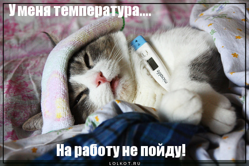 u-menya-temperatura..._1321794271