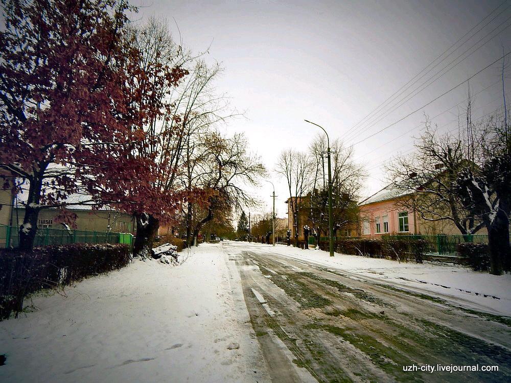 Ужгород ул. Яна Гуса 1