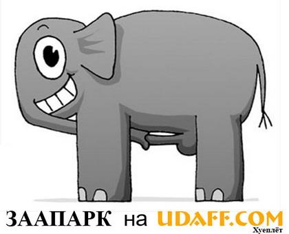 слон-удавком.jpg