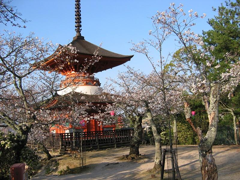 Japan_052