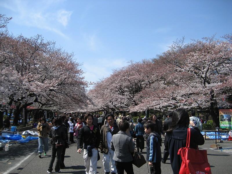 Japan_057