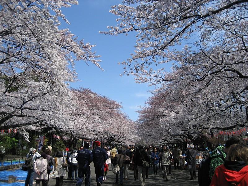 Japan_058