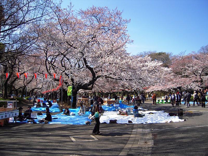 Japan_061