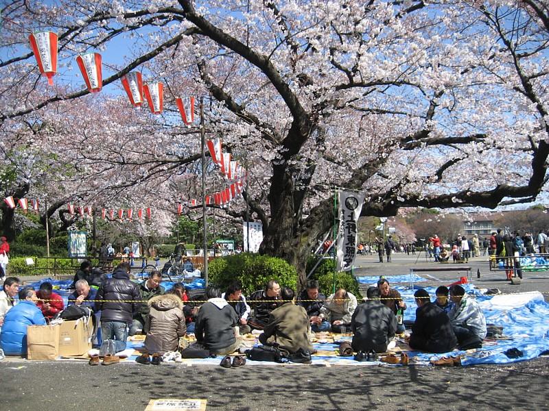 Japan_062