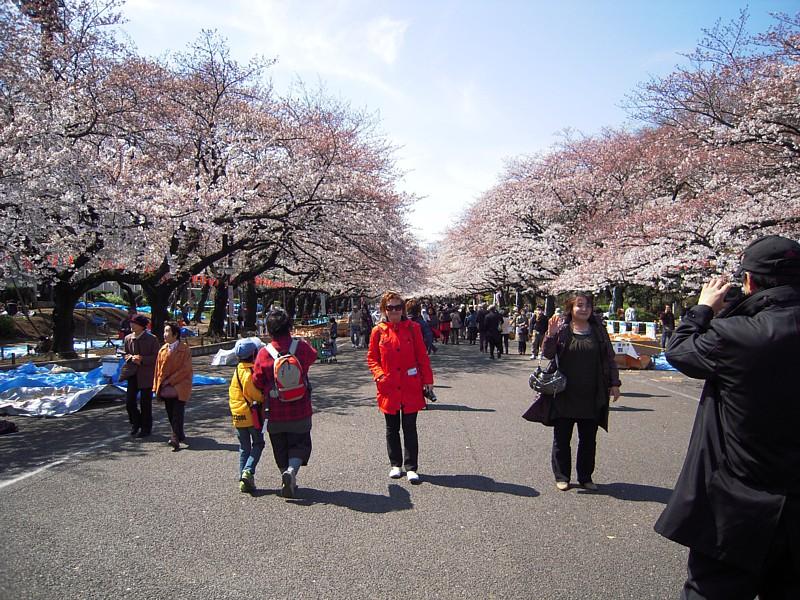 Japan_064