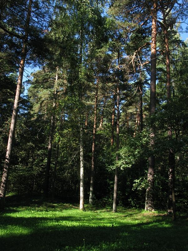Riga_a1367