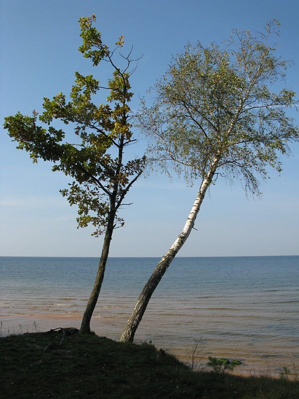 Latvija_629