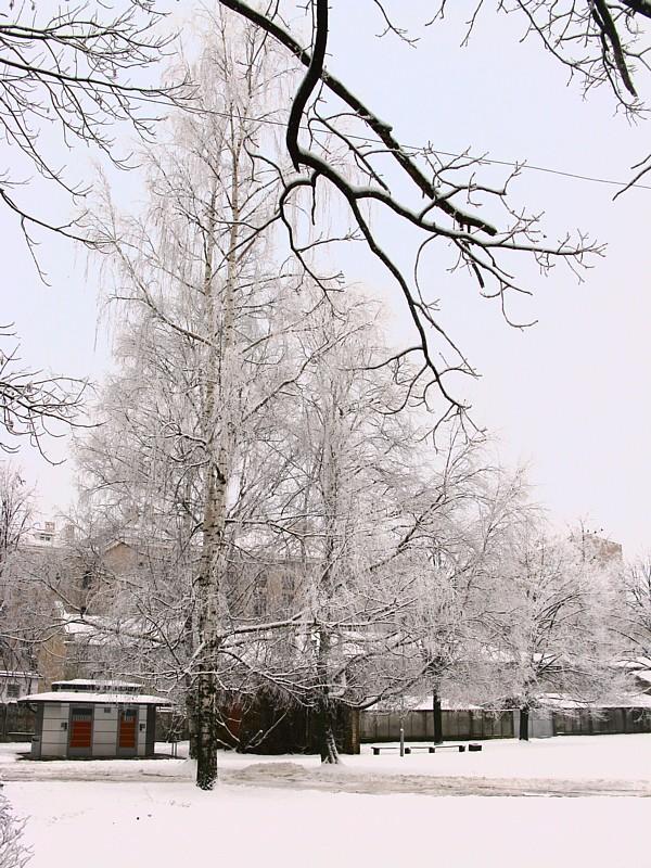 Riga_a1424