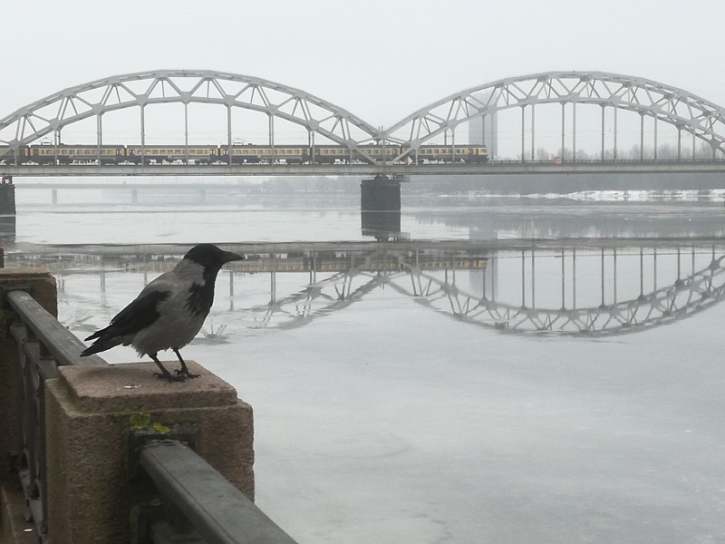 Riga_a1521.jpg