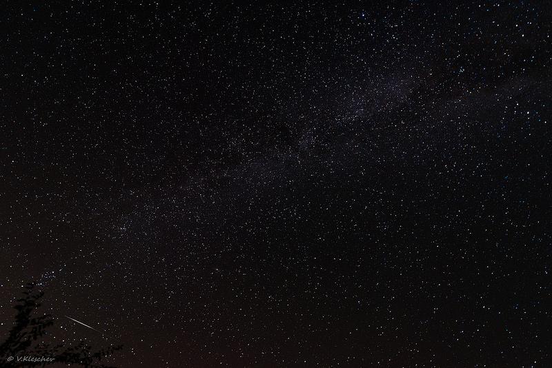 Млечный путь и метеор на дереве