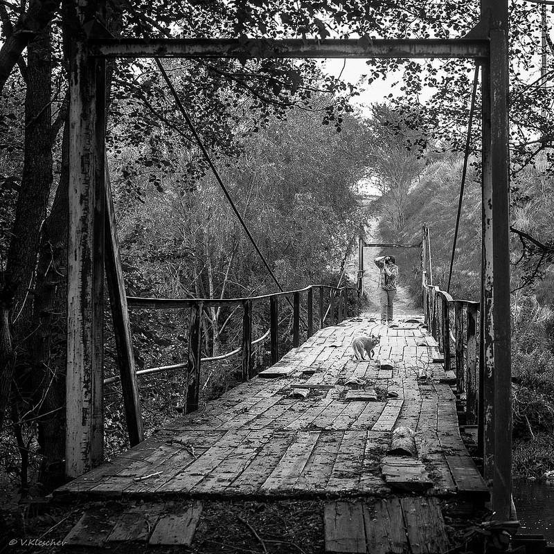 Котейка на мосту через Сызранку