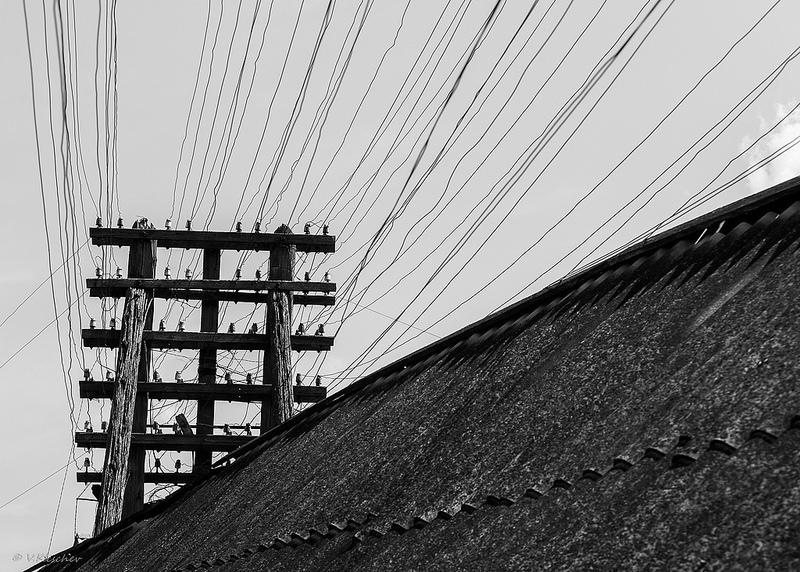 Воздушная линия электросвязи в селе Канадей, Ульяновская область