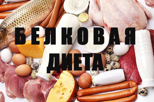 Белковая диета какие продукты в нее входят