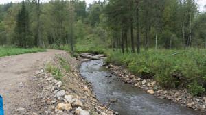 Речка Белокуриха в горах. Ещё совсем маленькая.
