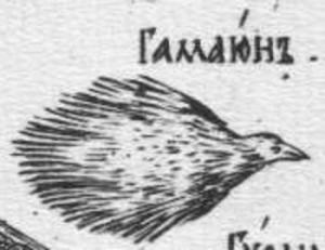Karion_Istomin's_alphabet_Gamaun