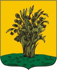 Surazh_COA_(Chernigov_Governorate)_(1782)