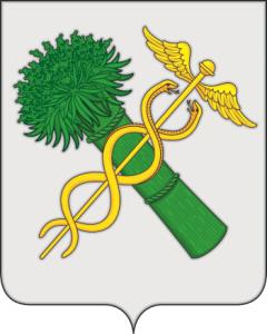 800px-Coat_of_Arms_of_Novozybkov