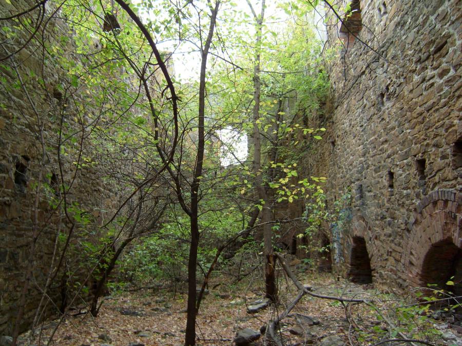 Остатки главного корпуса брикетной фабрики в пос. Брикетный Луганской обл.